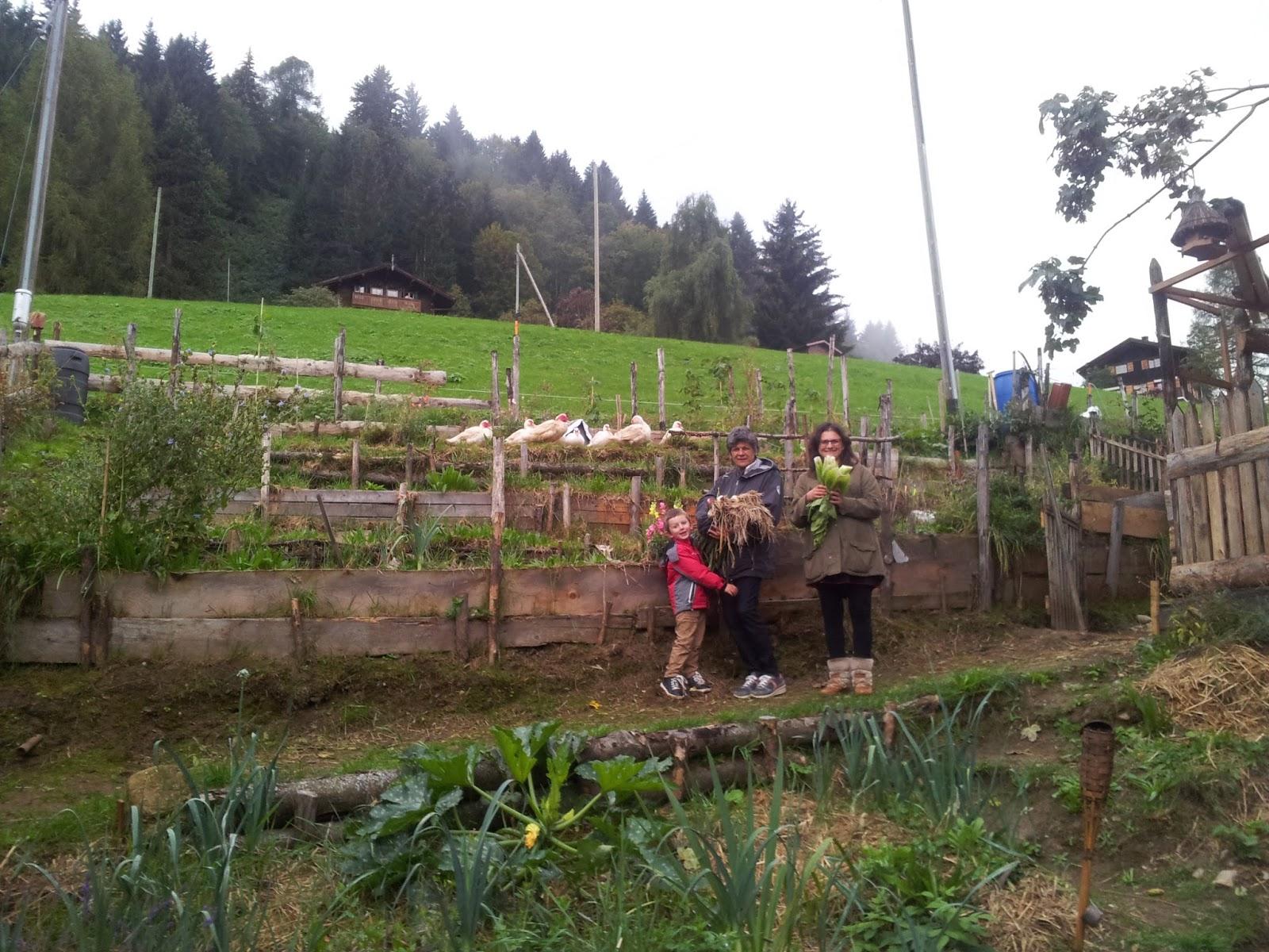 Willkommen auf der Website von Permakultur Schweiz